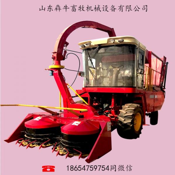 供应自走式玉米秸秆收获一体机犇牛4QZ-2600甜象草收割机