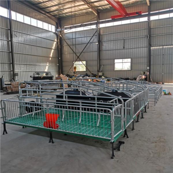 天津市双体母猪产床全复合猪产床价格