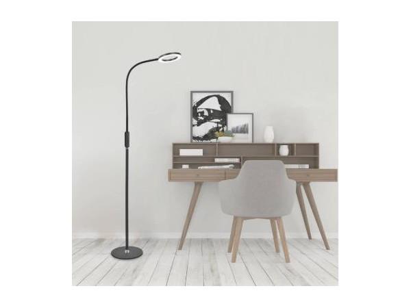 好眼光 现代北欧简约led落地灯立式按键遥控定时客厅卧室灯D301B1