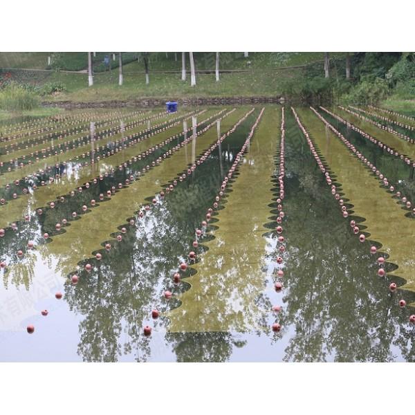 石墨烯光催化网-纳米石墨烯水生态网-
