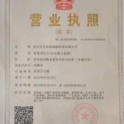 武安市光谷新能源科技有限公司